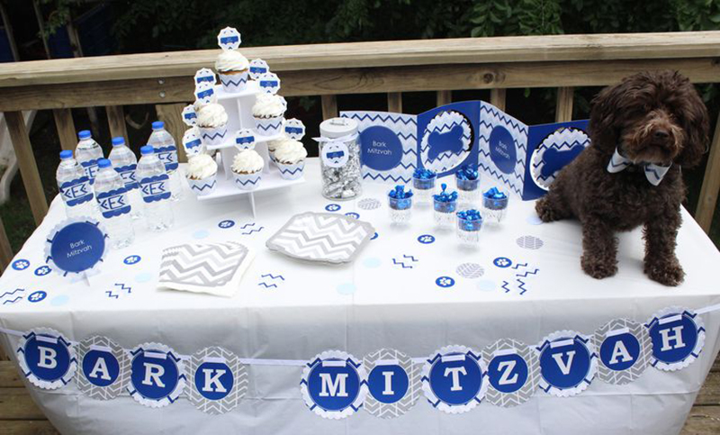 A dog sits on a table with cupcakes and a sign that reads