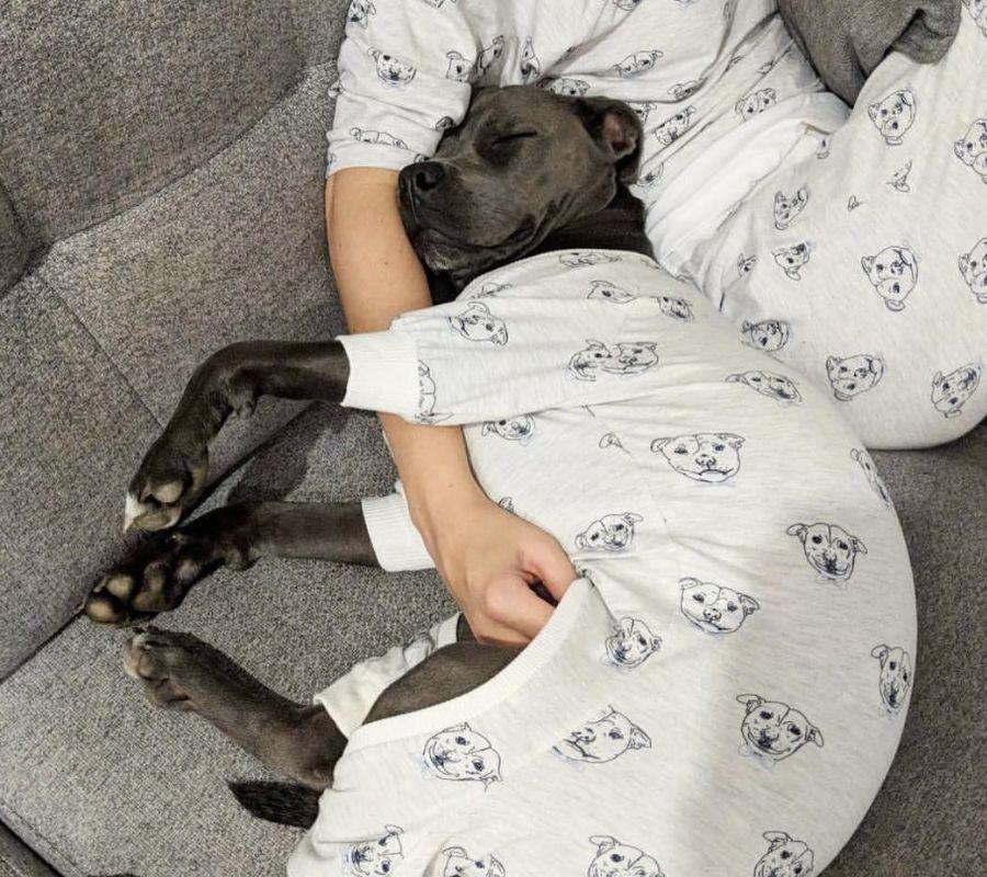dogs cuddling in payjamas