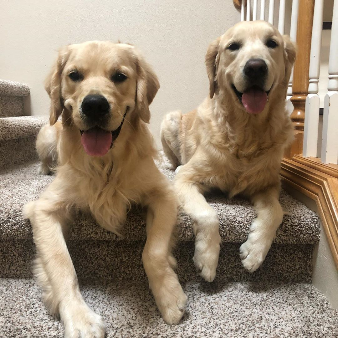 sitting on the stairs